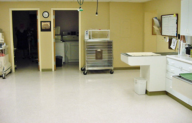 Large treatment area, for medical procedures, dental cleanings and surgical recovery monitoring